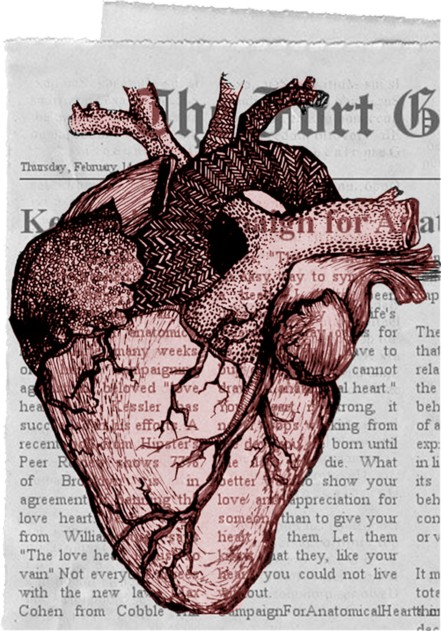 anatomical_fabric_heart